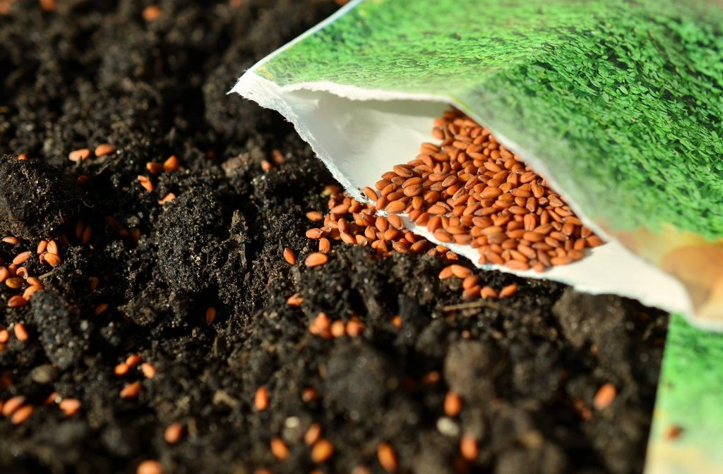 A packet of seeds being sown